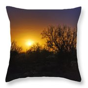 A Golden Saguaro Sunrise Throw Pillow