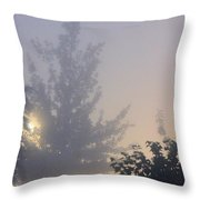 A Gothic Night's Stroll Throw Pillow