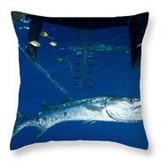 A Great Barracuda Beneath A Boat, Kimbe Throw Pillow