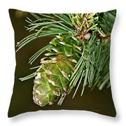 A Growing Pine Cone Throw Pillow