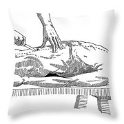 A Handbook Of Morbid Anatomy Throw Pillow