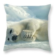 A Harp Seal Pup Lies On Its Side Throw Pillow