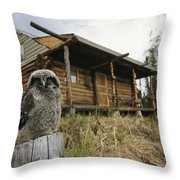 A Hawk Owl Sits On A Stump Near A Log Throw Pillow