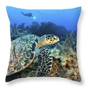 A Hawksbill Turtle Swims Throw Pillow