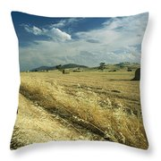 A Hay Field With Bales Sitting Throw Pillow