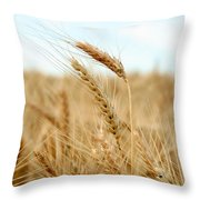 A Head Taller Throw Pillow