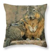 A Herbivorous Viscacha Nurses Her Baby Throw Pillow