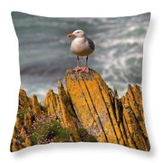 A Herring Gull, Colonsay, Scotland Throw Pillow