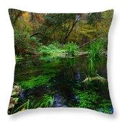 A Hint Of Fall At Ichnetucknee Springs Throw Pillow