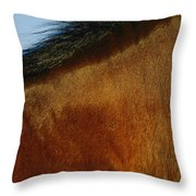 A Horses Neck And Mane, Seen So Close Throw Pillow
