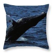 A Humpback Whale Breaching Throw Pillow