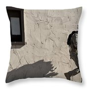 A Joint Tactical Air Controller Throw Pillow