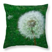 A Journey As One  Throw Pillow