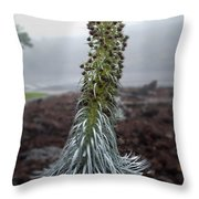 A Kiss Before Dying Throw Pillow