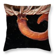 A Large Feather Duster Worm Throw Pillow