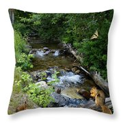 A Lazy Summer Day On Mt Spokane Throw Pillow