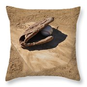 A League Of The Own Throw Pillow by Bill Cannon