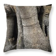 A Leopard And Cub Inside A Giant Baobab Throw Pillow