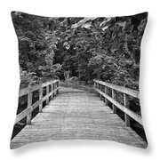 A Lesson In Solitude Throw Pillow