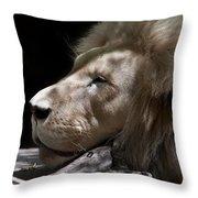 A Lions Portrait Throw Pillow