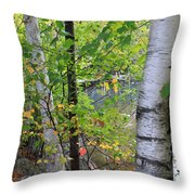 A Little Bit Of Color Throw Pillow