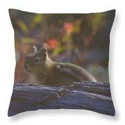 A Little Chipmunk  Throw Pillow