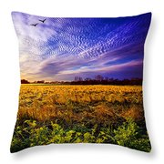 A Little Further South Throw Pillow