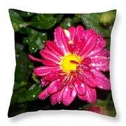 A Little Hot Pink Throw Pillow