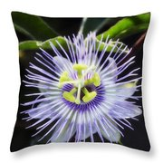 A Little Passion  Throw Pillow