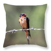 A Little Ruffled Throw Pillow by Travis Truelove