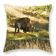 A Lone Bison In Yellowstone 9467 Throw Pillow