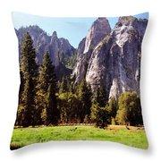 A Look Across The Meadow  Throw Pillow