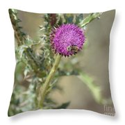 A Love Affair Throw Pillow