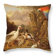 A Macaw - Ducks - Parrots And Other Birds In A Landscape Throw Pillow