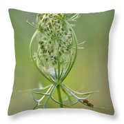 A Meal Of Lace Throw Pillow