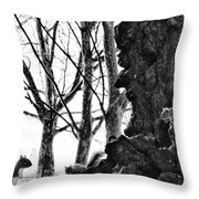 A Meeting Of Squirrels Throw Pillow