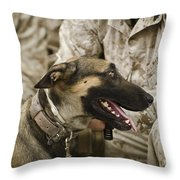 A Military Working Dog Sits At The Feet Throw Pillow by Stocktrek Images