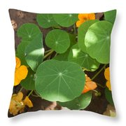 A Mix Of Orange Flowers And Round Green Leaves With Sun And Shadow Throw Pillow