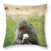 A Monkey Enjoying An Ice Cream Cone Inside Delhi Zoo Throw Pillow