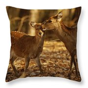 A Mother And Fawn Sika Deer Throw Pillow