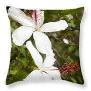 A Native Hawaiian Hibiscus Arnottianus Throw Pillow