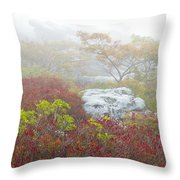A Natural Garden At Dolly Sods Wilderness Area Throw Pillow