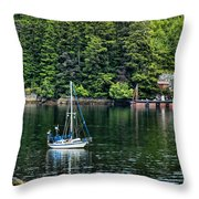 A Nice Day For A Sail Throw Pillow