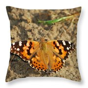 A Painted Lady Looking For Sex 8619 3369 Throw Pillow