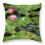 A Painted Turtle Rests On A Water Lily Throw Pillow