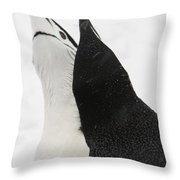 A Pair Of Chinstrap Penguins Throw Pillow
