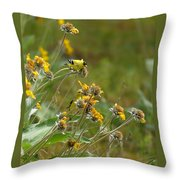 A Pair Of Goldfinches In Spokane Throw Pillow