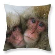 A Pair Of Japanese Macaques, Or Snow Throw Pillow