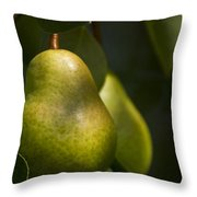 A Pair Of Pear On A Tree Throw Pillow