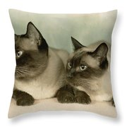A Pair Of Siamese Cats Throw Pillow